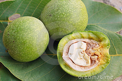 Walnuts in a skin