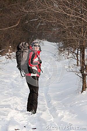 Wandelaar in de winterbos