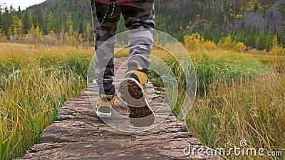 Wandern Fet Forest Road im Tessin Wandern im Val Bedretto stock video