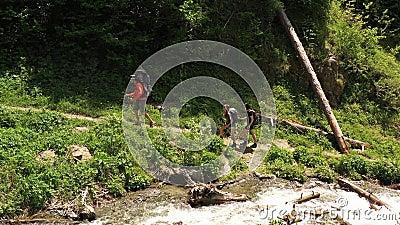 Wandern mit Rucksack auf Wanderwegen. Mädchen gewaschen Gesicht in Bergbach stock footage