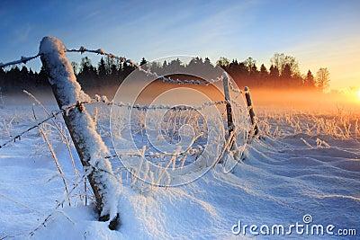 Warme koude de winterzonsondergang