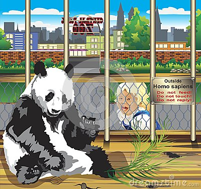 Free Warning From The Panda In A Cage. Stock Photography - 78081182