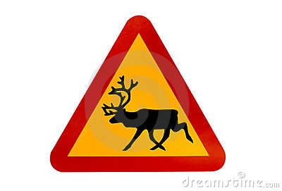 Warning sign for reindeers