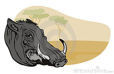 Warthog with safari background