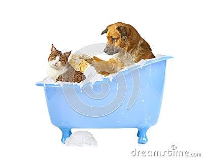 Waschen Sie sich