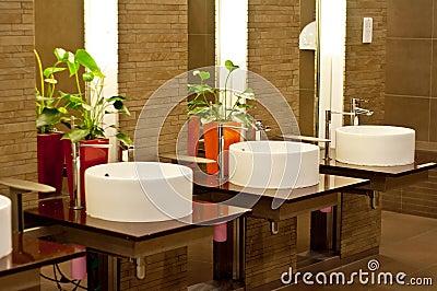 Wash Basins in Restroom