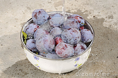 Washing plums