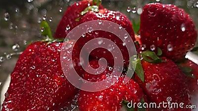 Washing strawberries. Fruits slow motion macro, 32 times slower