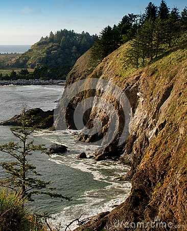 Washington Coastal Cliff