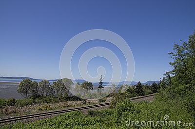 Washington Coastline Railroad Tracks