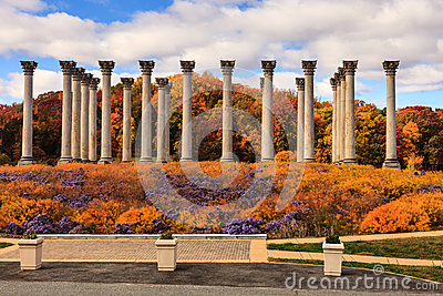 Washington DC National Capitol Columns in Autumn