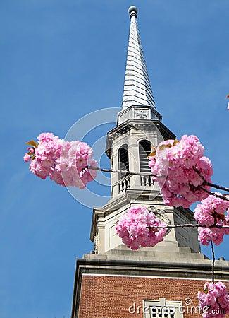 Washington Presbyterian Church 2010