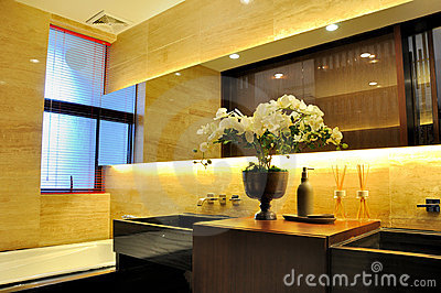 Washroom interior ornaments and lighting