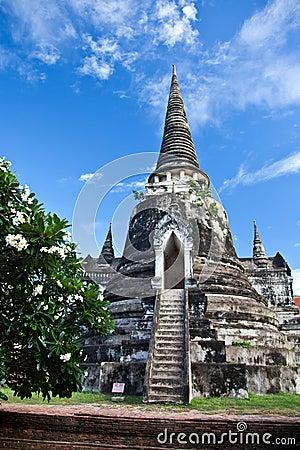 Free Wat Phra Sri Sanphet Of  Ayutthaya Stock Photo - 19952670