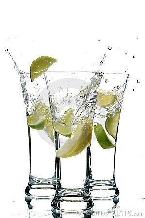 Free Water And Lemon Stock Photography - 3088542