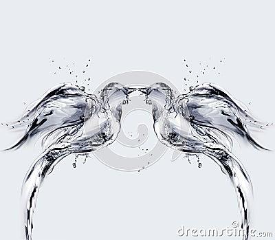 Water Birds of Love