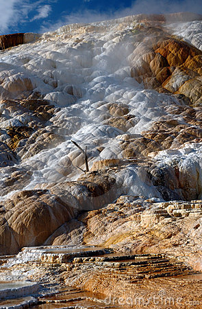 Water coming off Mammoth Hot Springs Terraces