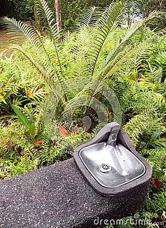 Water cooler for drinking in garden