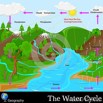 Free Water Cycle Stock Photos - 31172153