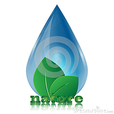 Free Water Drop And Green Leaves Stock Image - 32181141