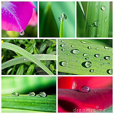 Free Water Drops Collage Stock Photos - 10773133