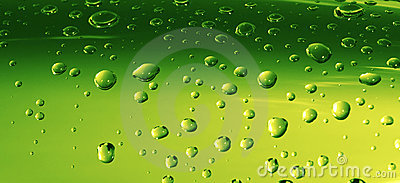 Water Drops on Green Surface