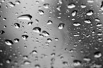 Water Drops On A Window