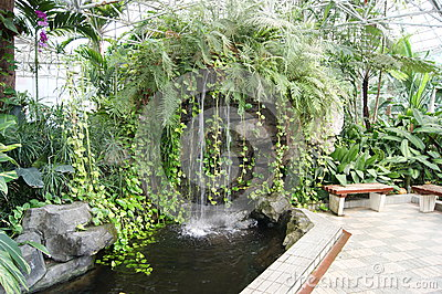 Water Feature in Greenhouse