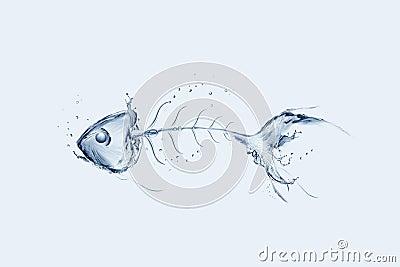 Water Fishbone
