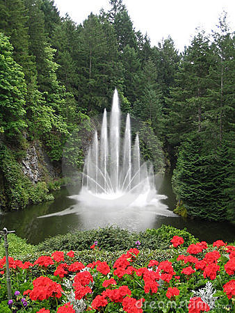 Water Fountain with Red Flowers in the Foreground