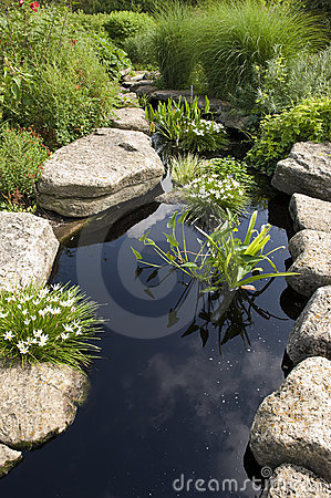 Free Water Garden Stock Photography - 6758012