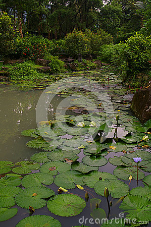 Water Garden in Taipei, Republic of China