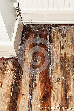 Water leak in a domestic house
