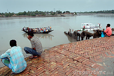 Water life of Sundarban Editorial Photo
