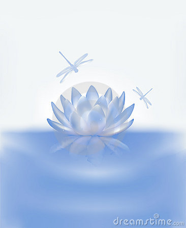 Water lily background 2
