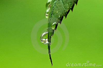 Water macro droplet