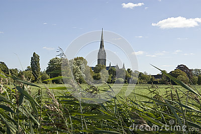 Water Meadows and Cathedral, Salisbury