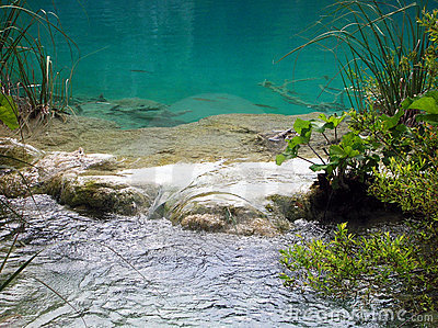 Water in Plitvice lake