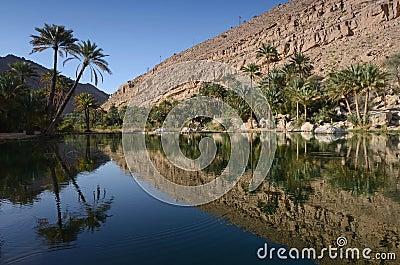Water pools in Wadi Bani Khalid, Oman