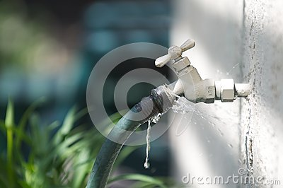 A water spigot with a green hose springs a leak