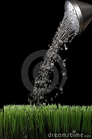 Free Water Sprinking From A Silver Garden Watering Can Stock Photography - 9245742