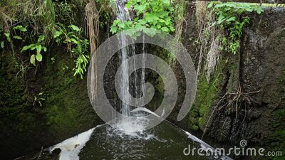 Water stream flowing out the pond into sewage stock video