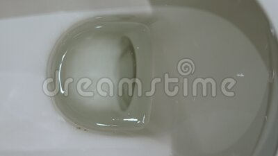 Water in toilet bowl. Top view of clean water in toilet bowl. Hygiene and sanitary in washroom. Flushing toilet bowl stock footage