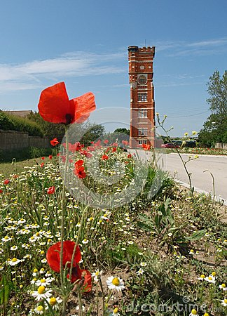 Water Tower and wild flowers