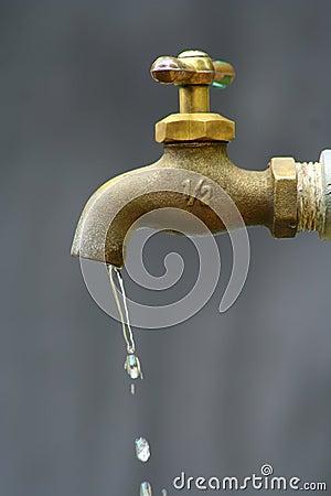 water tub or water drop