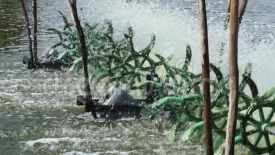 Water Turbines Supplying Fish Pond with Oxygen. Pan Zoom Shot stock video footage