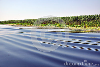 Water waves from a boat