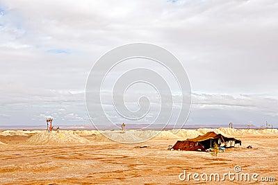 Water wells in Sahara