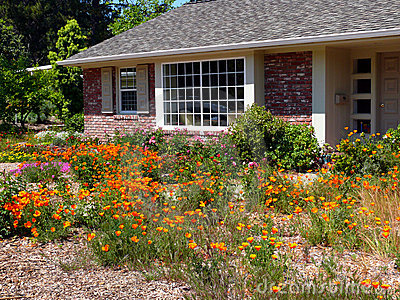 Water wise gardening in California