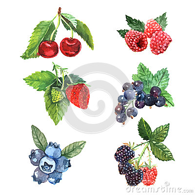 Free Watercolor Berry Set Royalty Free Stock Photos - 52730478
